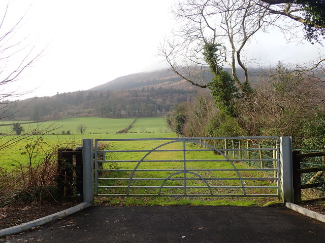Estate gate on Ballintemple Road