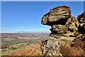 NZ7004 : Hanging Stone, Danby Dale by Mick Garratt