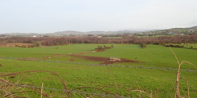Wooded fen on the wide valley floor east of Aghadavoyle Road