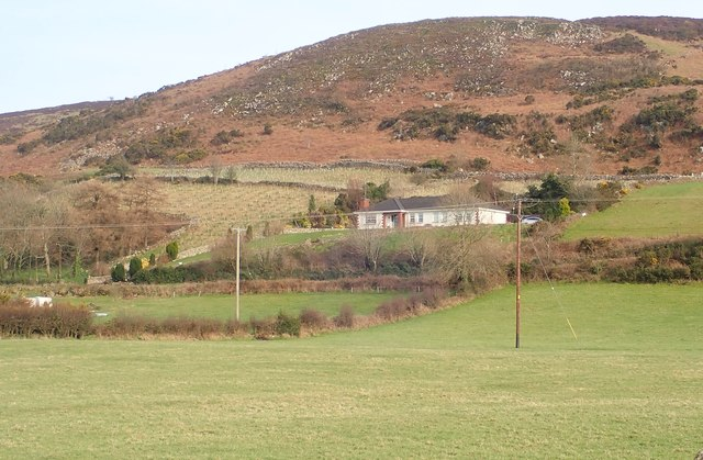 Nursery plantation above Molly Road on the SW flank of Faughall Mountain
