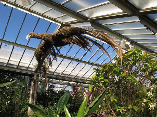 Kew Gardens orchid festival, model of condor