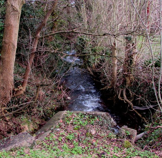White water on Blaen Bran, Cwmbran