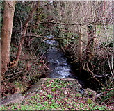 ST2896 : White water on Blaen Bran, Cwmbran by Jaggery