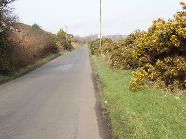 View North along Lower Foughill Road