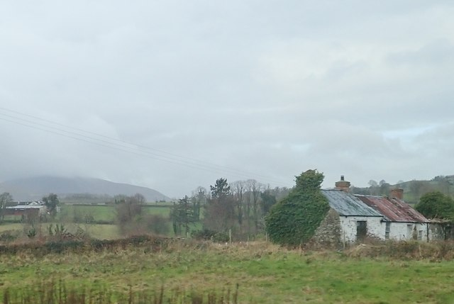 Derelict homestead off the A50 (Castlewellan Road)