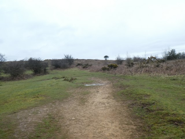 Path across the moorland on Lydeard Hill
