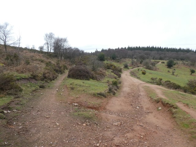 Junction of paths south of The Slades