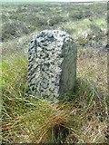 SD9620 : Old Boundary Marker by Milestone Society