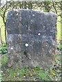 SJ2062 : Old Boundary Marker by Milestone Society