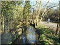 TQ2593 : Dollis Brook at Totteridge by Des Blenkinsopp