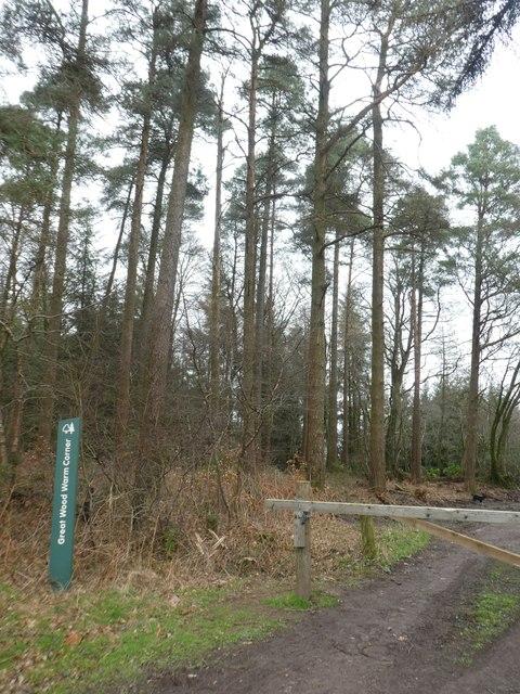 Gateway at Great Wood Warm Corner