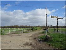 TQ4661 : Country lanes near Pratts Bottom by Malc McDonald