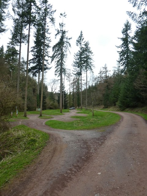 Car park and tall trees, Ramscombe