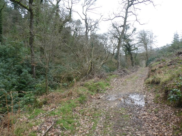 Footpath in Ramscombe