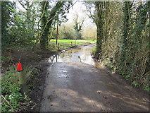 TQ4660 : Washneys Road near Knockholt by Malc McDonald