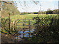 TQ4759 : North Downs Way at Knockholt by Malc McDonald