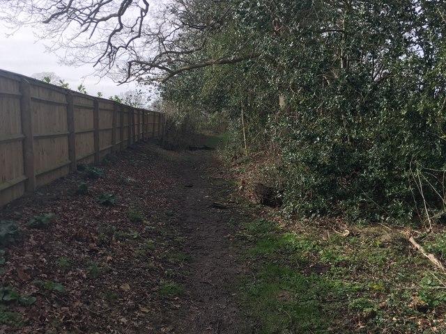 Path to Hailey