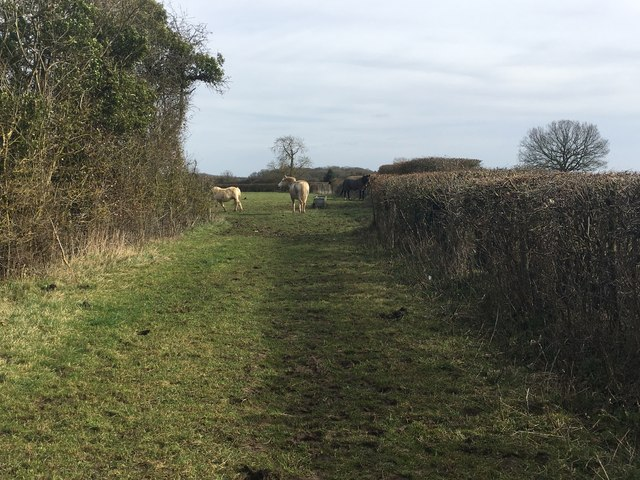 Path to New Yatt Lane