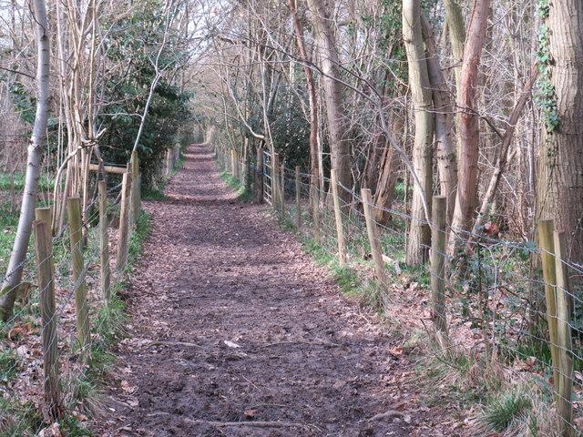 Muddy track near Knockholt Pound