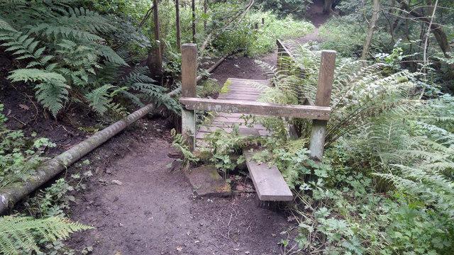 Stile and footbridge on path below Causeway Wood Road, Lumbutts