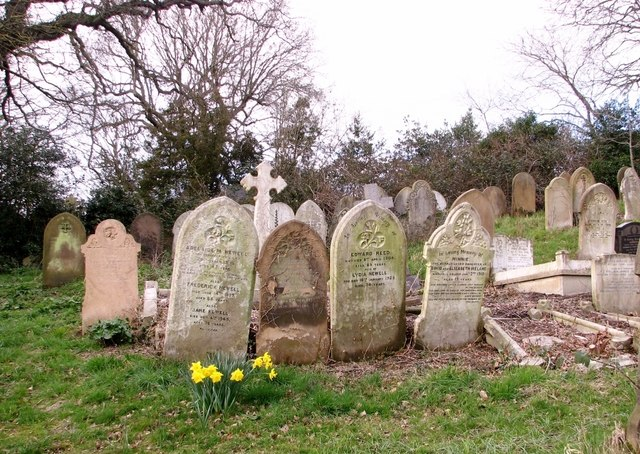 Recently cleared headstones and graves