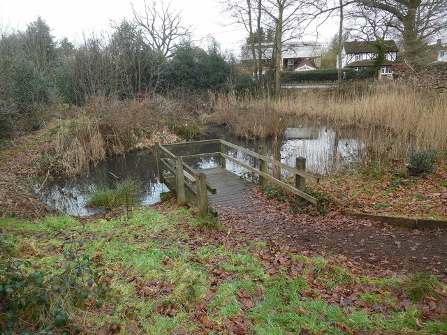 Sheepwash Pond, Prestwood (1)