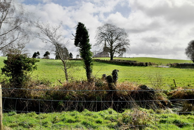 Mountjoy Forest East Division Townland