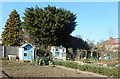 TQ2591 : Desirable Properties on the Allotments by Des Blenkinsopp