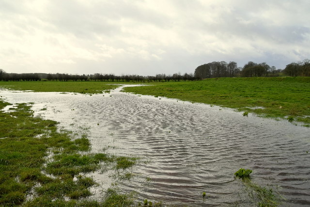 Flooded ground, Mountjoy Forest East Division