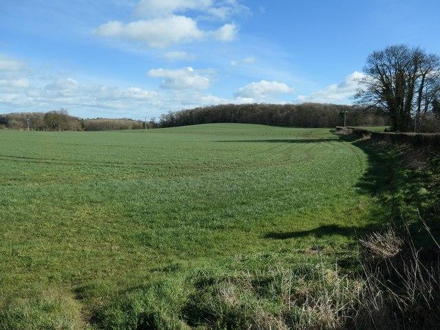 West Park farmland