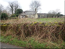 J0718 : Derelict cottage at the junction of Newtown Road and the R132 (Dublin Road) by Eric Jones