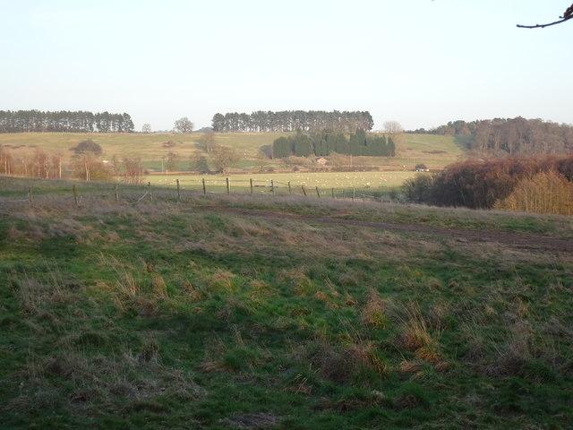 Bridgnorth Road Field