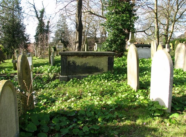 Gravestones and a chest tomb