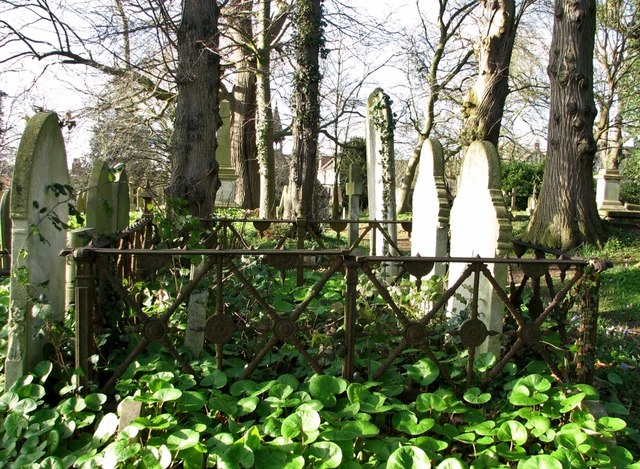 Old iron railings