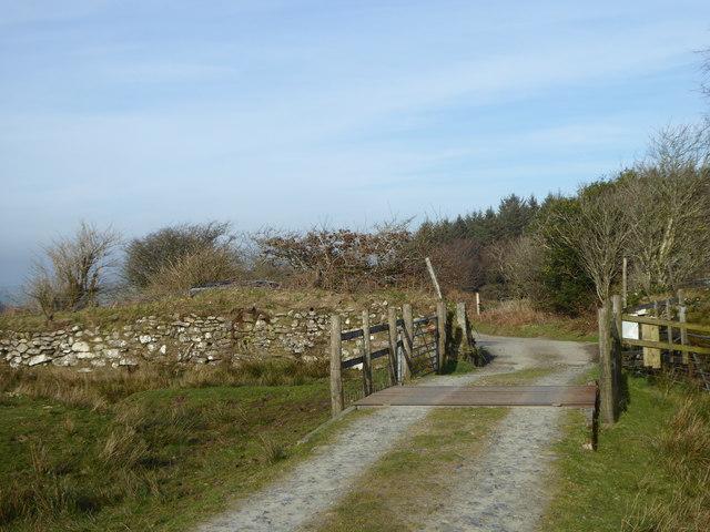 Cattle grid on the edge of Twelve Men's Moor