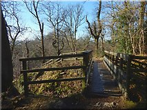 NS4276 : Overtoun House Nature Trail by Lairich Rig