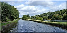 SJ8842 : Canal north-east of Trentham, Stoke-on-Trent by Roger  Kidd