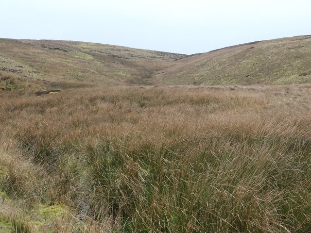 Boggy moorland on the north bank of Long Gill