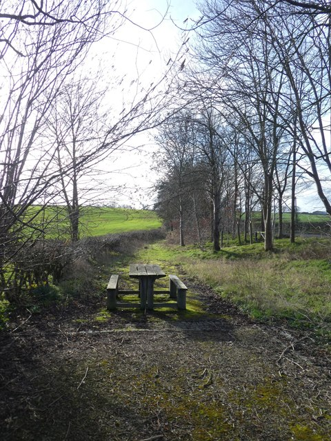 Picnic table and old road at Cantlop Bridge