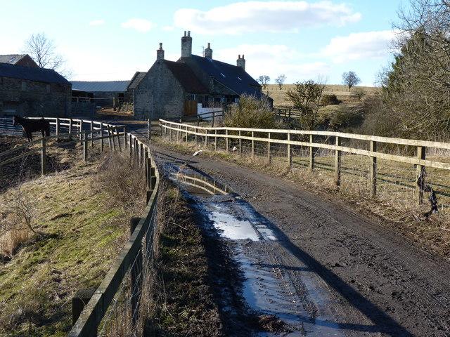 Old White Lea Farm