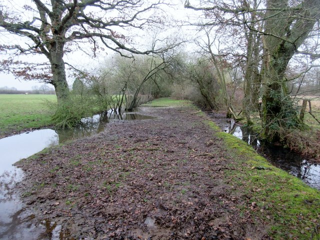 Path between flooded drainage ditches