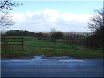 SJ4921 : Field entrance off the A528 by JThomas