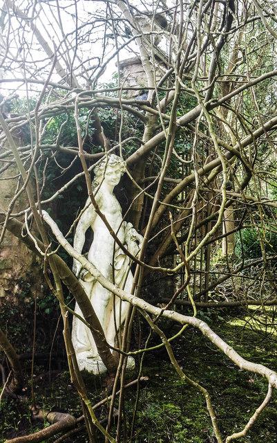 Overgrown gardens, Plas Teg, Flintshire