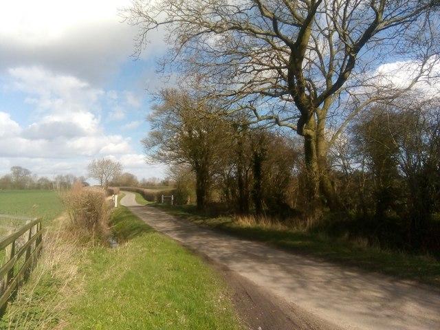 Lane looking north towards Theberton