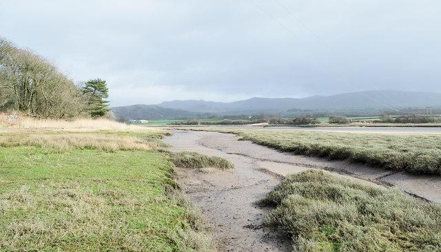 Creek of the Esk estuary