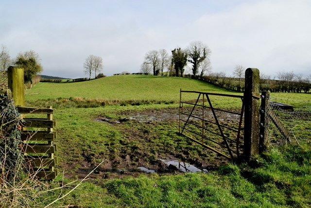 Muddy entrance to field, Tullylinton