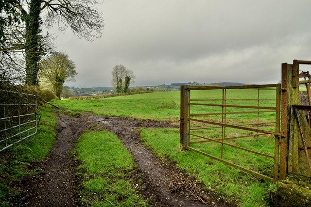 Tracks to field, Tullylinton