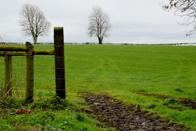 Posts at the end of a field, Tullylinton