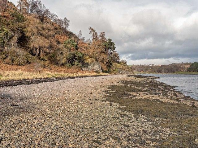 Shoreline below Craigiehowe