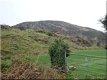 H9917 : Mullaghbane Mountain from the Quilly Road by Eric Jones